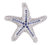 STARFISH,BEACH COLLECTION,CHAR,PENDANT