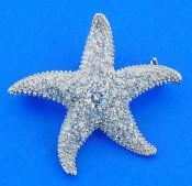 STARFISH,PIN,PENDANT,STERLING