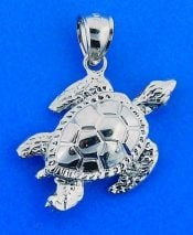 SEA TURTLE,CHARM,STERLING