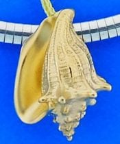 Steven Douglas Conch Shell Pendant/Slide Enhancer, 14k