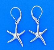 Starfish Lever Back 3d Earrings, 14k White Gold