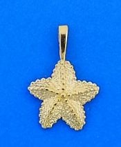 Starfish Charm/Pendnt, 14k Yellow Gold