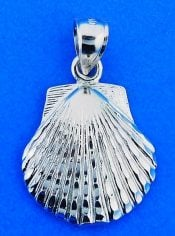 Scallop Shell Pendant/Charmsterling Silver