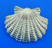 sterling silver scallop shell slide