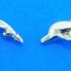 alamea dolphin post earrings
